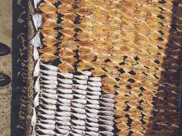 Đảo Thạnh An - Tôm cá phơi khô 2